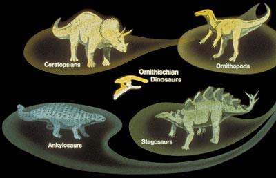 ornithischian