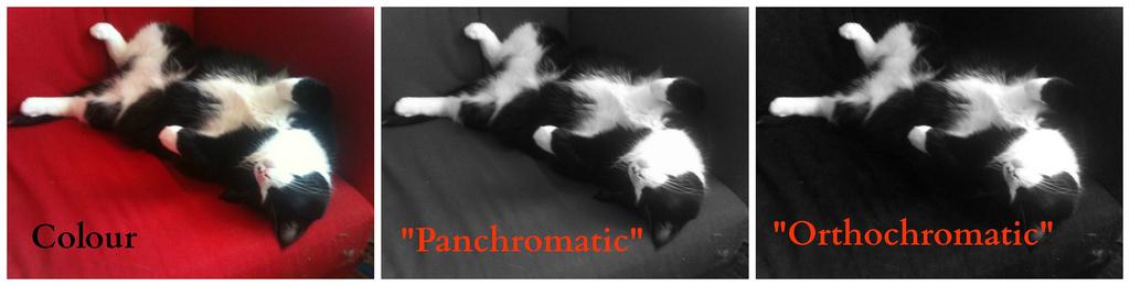 orthochromatic