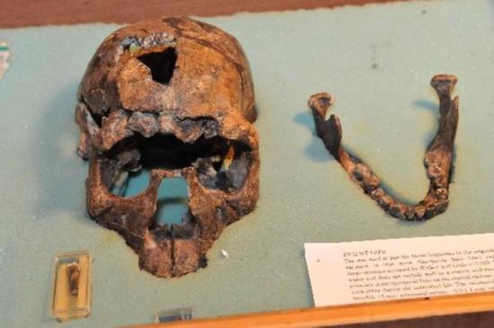 paleoanthropic