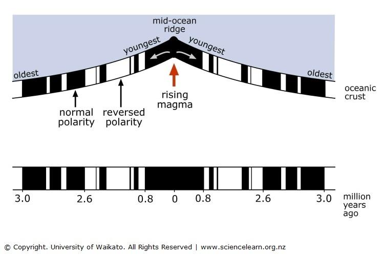 paleomagnetic