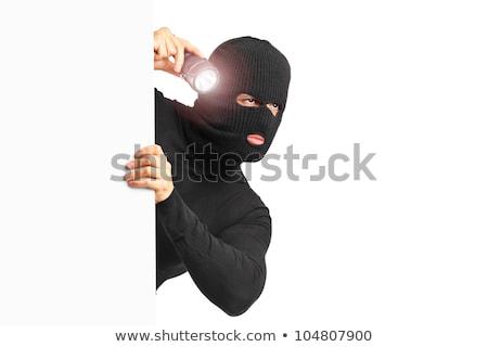 panel thief
