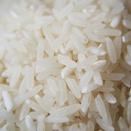 patna rice