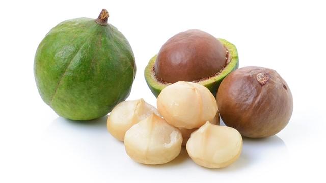 Queensland nut