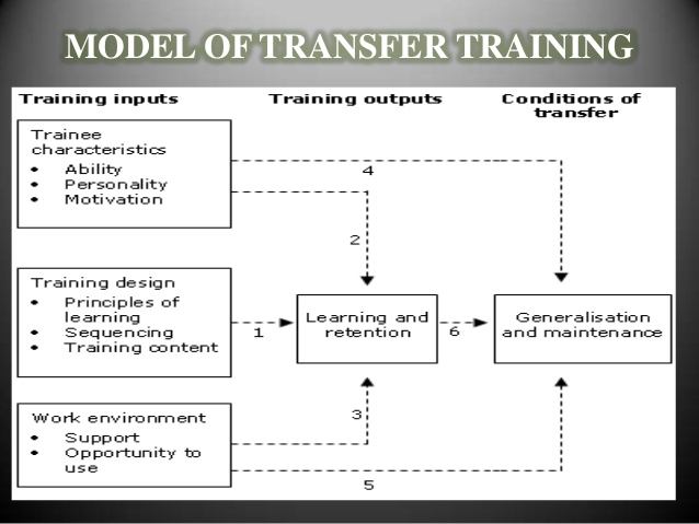 transfer of training - Liberal Dictionary