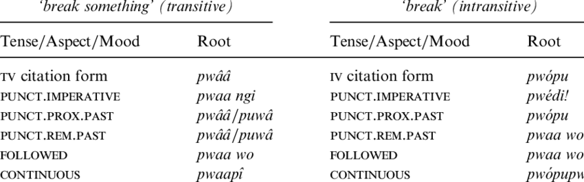 transitive verb