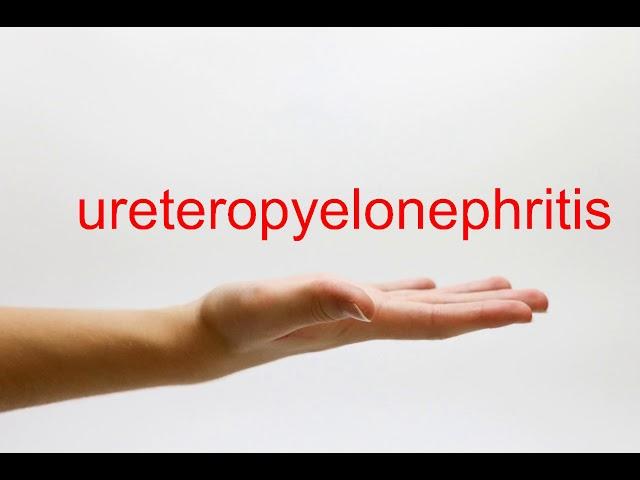 ureteropyelonephritis