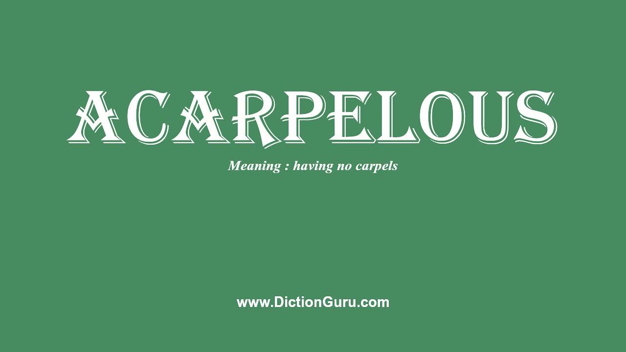 acarpelous