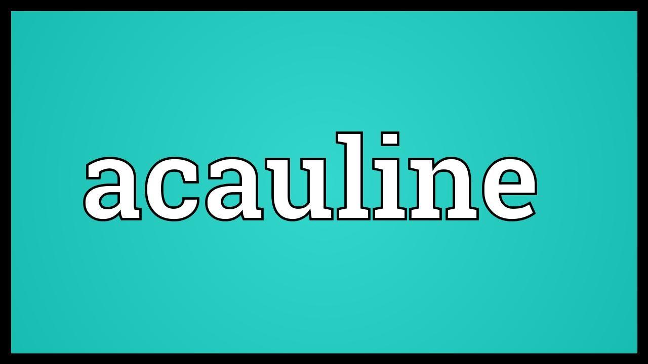 acauline