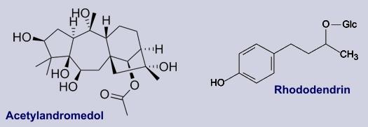acetylandromedol