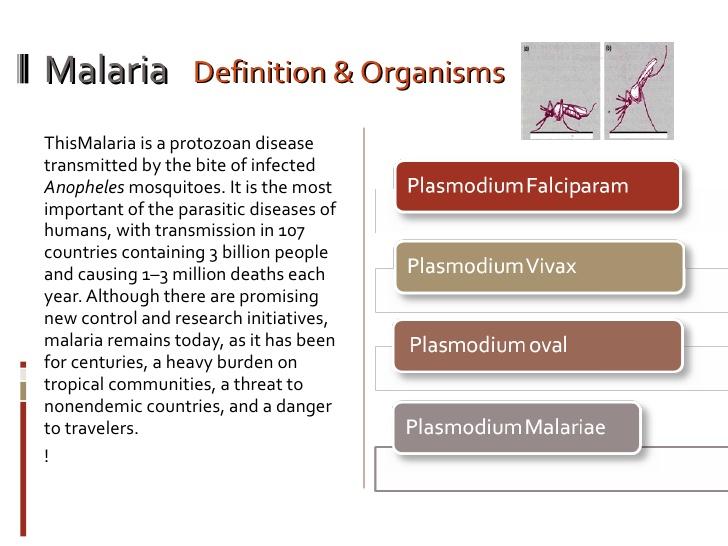 acute malaria