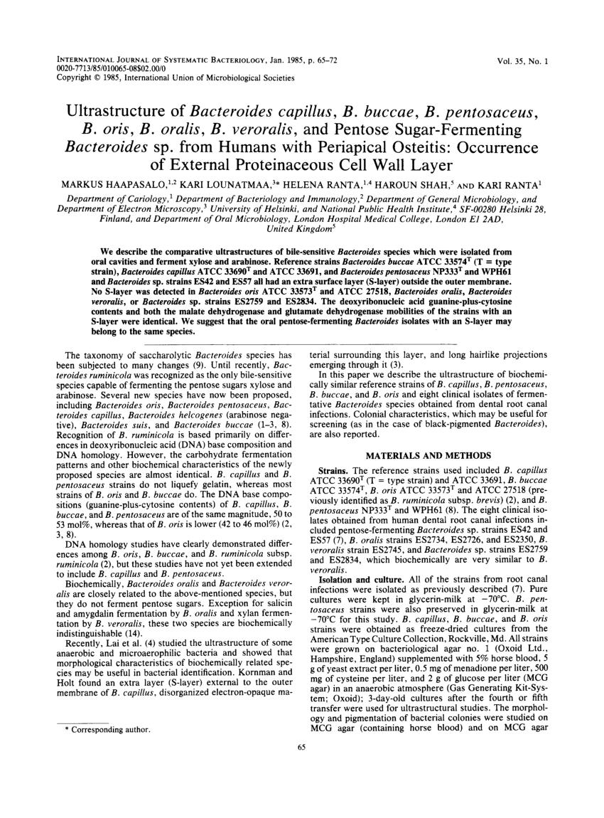 bacteroides oris