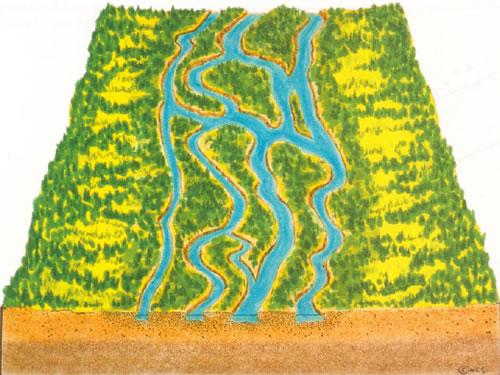 braided stream
