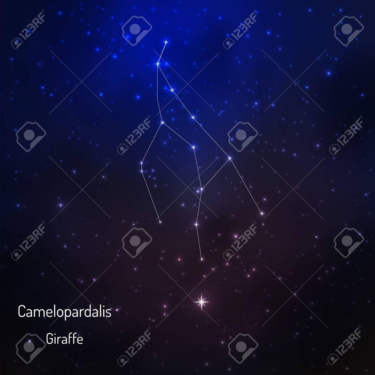 camelopardus