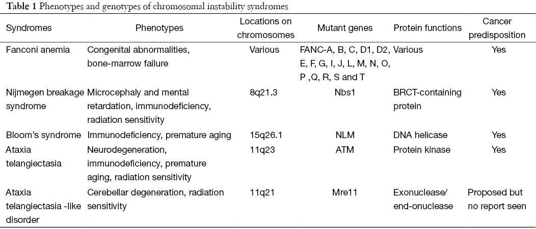 chromosomal instability syndrome