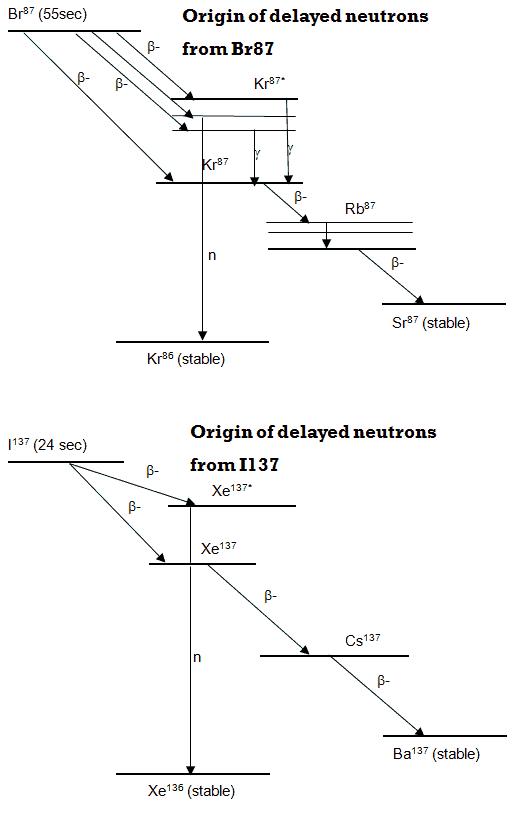 Precursors of Delayed Neutrons