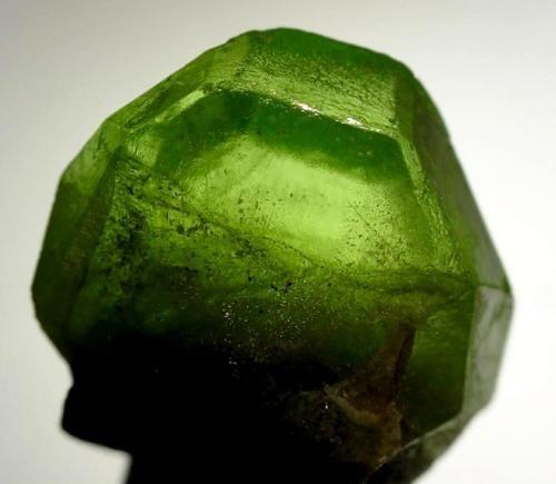 evening emerald
