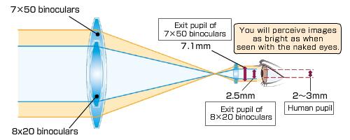 exit pupil