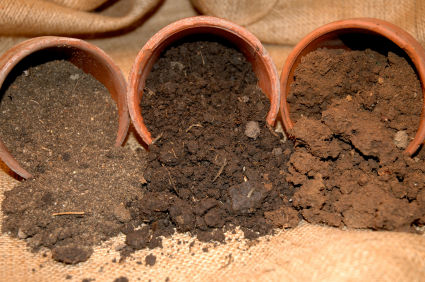 Buy Screened Loam - South Shore Landscape Supply