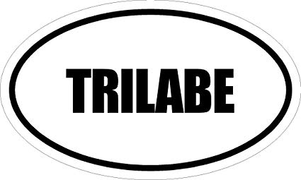 trilabe