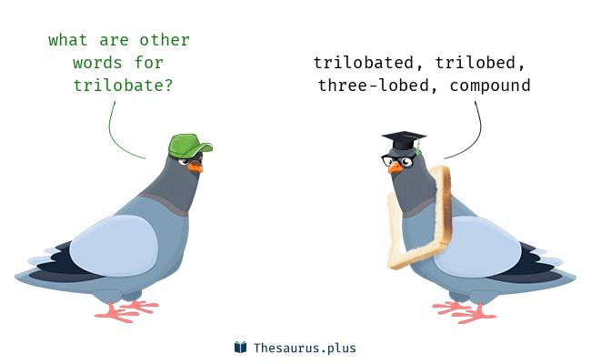 trilobate