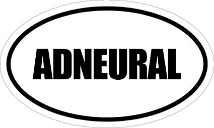"""Any and All Graphics ADNEURAL 6"""" Printed White Vinyl Oval Euro Style  Decal Sticker"""