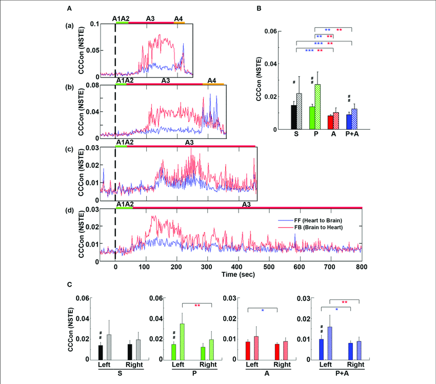 Adrenergic blockade decreases corticocardiac directional connectivity  (CCCon). (A) CCCon, measured by the Normalized Symbolic Transfer Entropy  (NSTE),