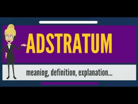 What is ADSTRATUM? What does ADSTRATUM mean? ADSTRATUM meaning, definition  & explanation