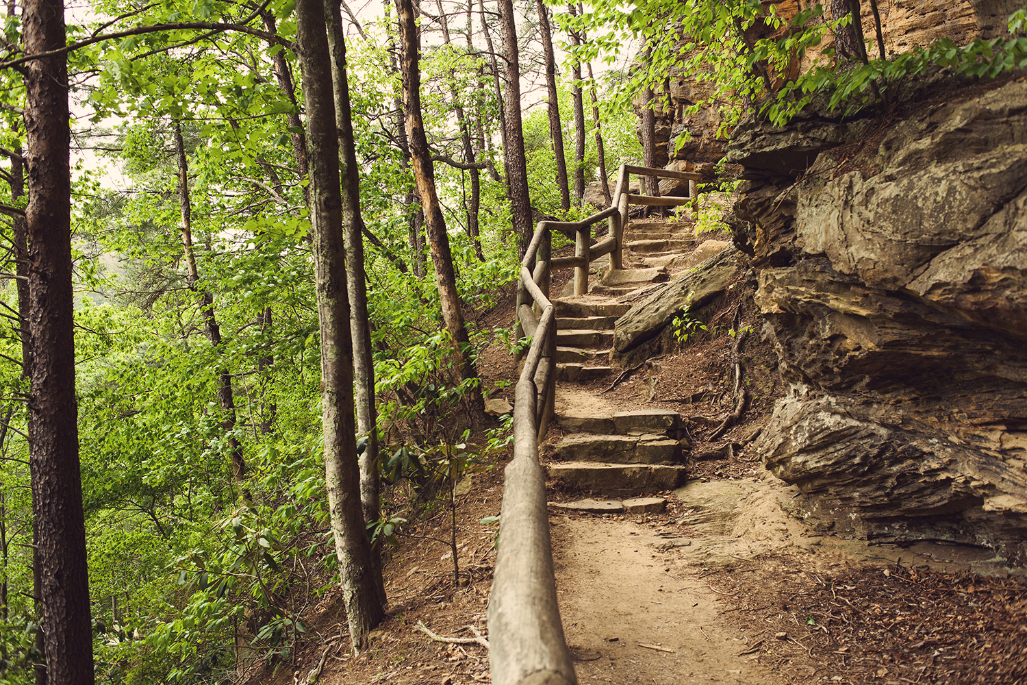 Adventuring   Red River Gorge - offbeat + inspired