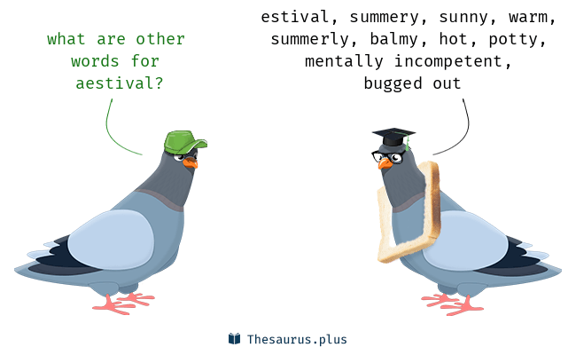 Synonyms for aestival