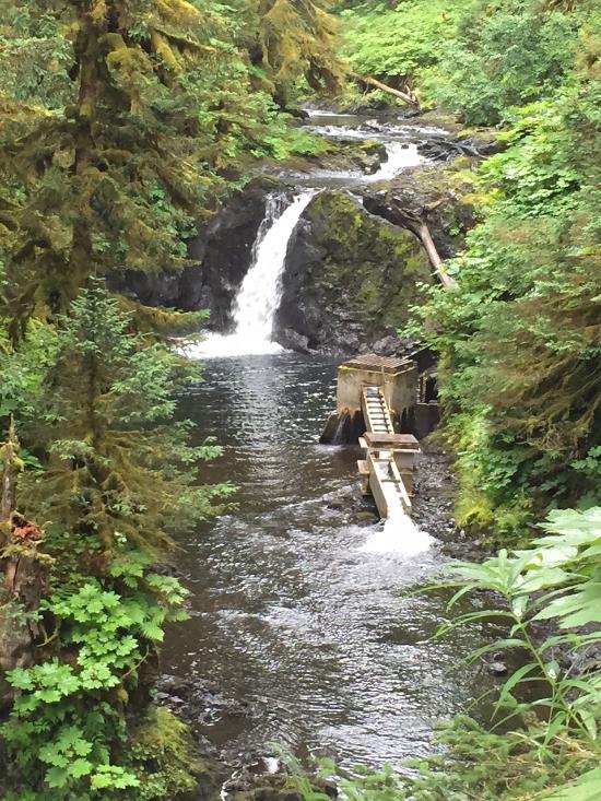 AFOGNAK WILDERNESS LODGE - Prices & Hotel Reviews (Kodiak Island, AK) -  TripAdvisor