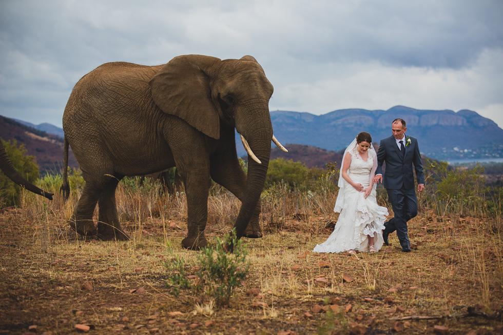 Cathryn & Andrew // Glen Afric Adventure // » Wedding & Lifestyle  Photographer | Johannesburg | Cape Town | Durban | South Africa |