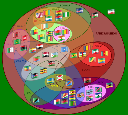 Role of African Union[edit]