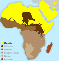 The languages belonging to the Afro-Asiatic family are subdivided into six  branches: