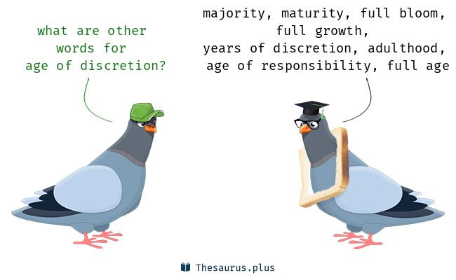 Synonyms for age of discretion
