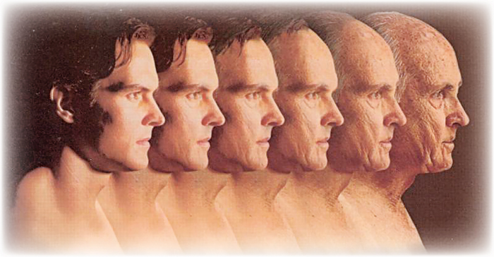 Human ageing longevity and life span
