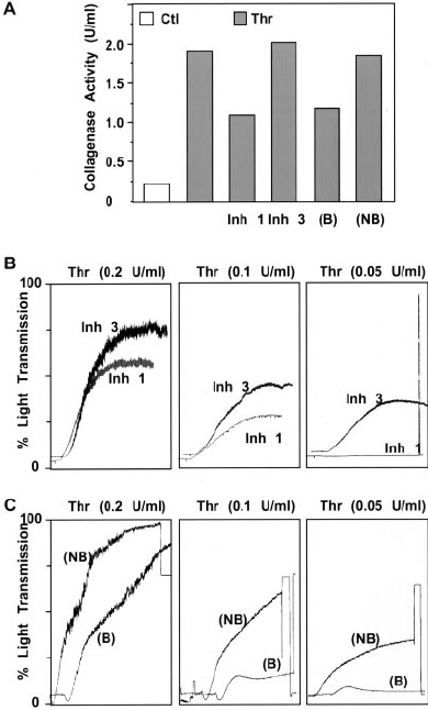 Neutralization of MMP-1 attenuates platelet aggregatory responses. A,  Platelets were pretreated for 1 minute with Inh 1 (10  mol/L), MMP-3  inhibitor (Inh