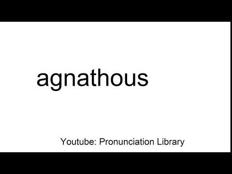 How to pronounce agnathous