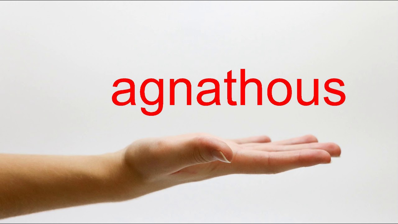 How to Pronounce agnathous - American English
