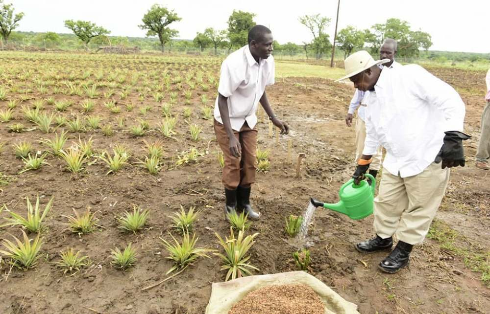President Museveni to officially open the Agric show tomorrow The president  of Uganda Farmers Federation Dick