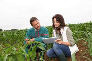 What is an Agricultural Engineer?