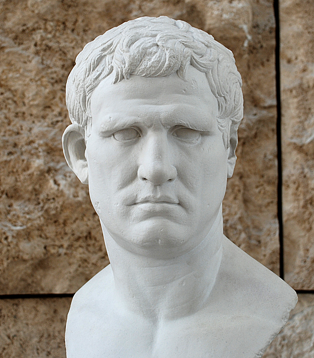 This photo is of a bust of Agrippa on display in the Ara Pacis in Rome,  which itself is a copy of an original in the Louvre.
