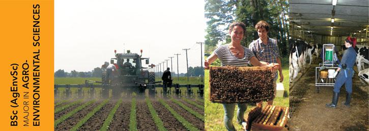 Major in Agro-Environmental Sciences