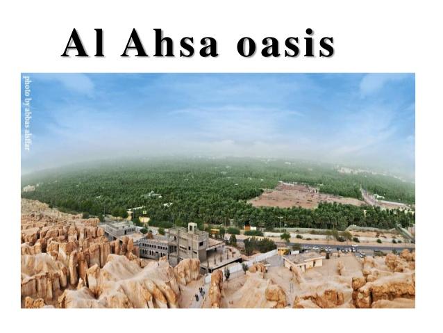 About Al Ahsa; 6.
