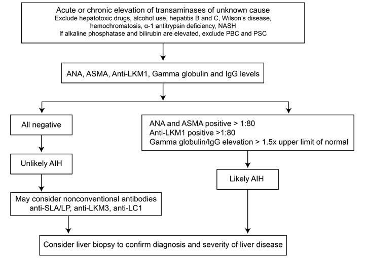 diagnostic algorithm for autoimmune hepatitis