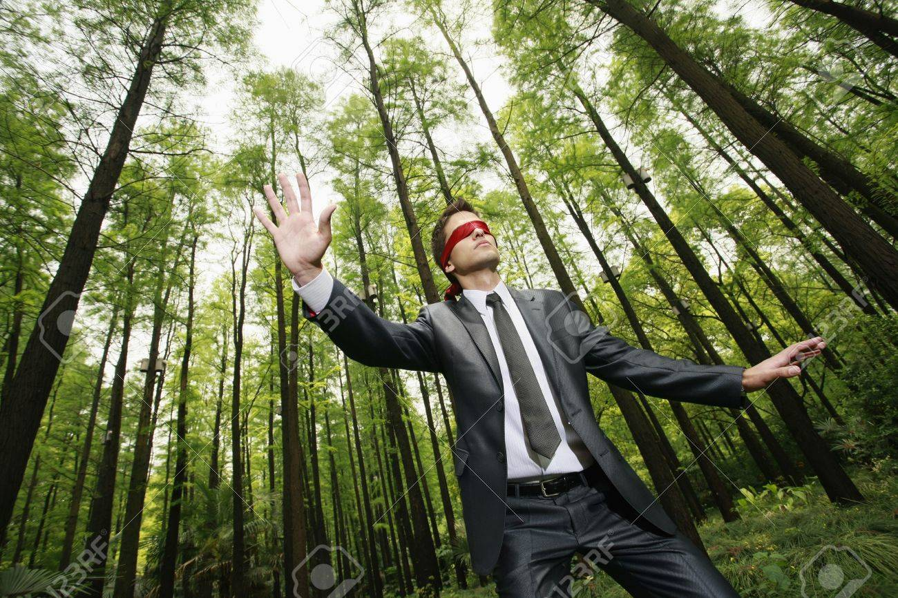 Businessman with blindfold walking aimlessly in the forest Stock Photo -  8149463