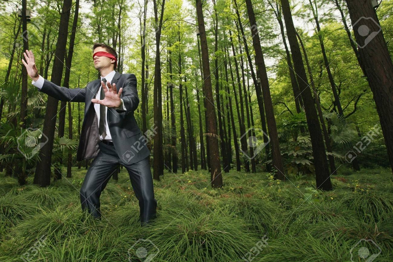 Businessman with blindfold walking aimlessly in the forest Stock Photo -  8149441