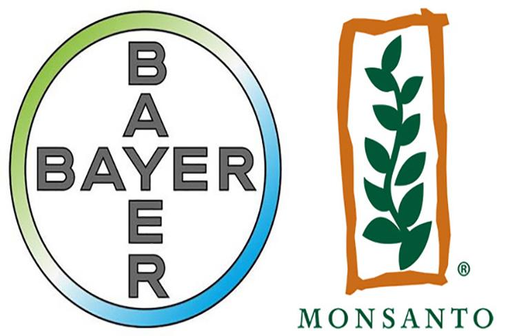 8 puntos para saber sobre la fusión Bayer-Monsanto – Traveller Location    Red de Especialistas en Agricultura