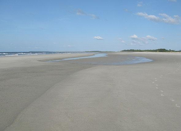 Wide Beach Berm
