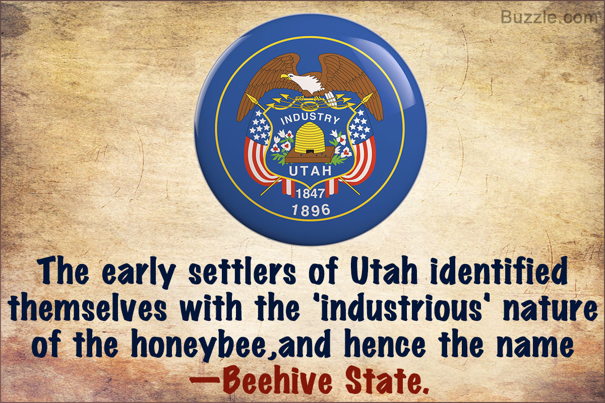 beehive state