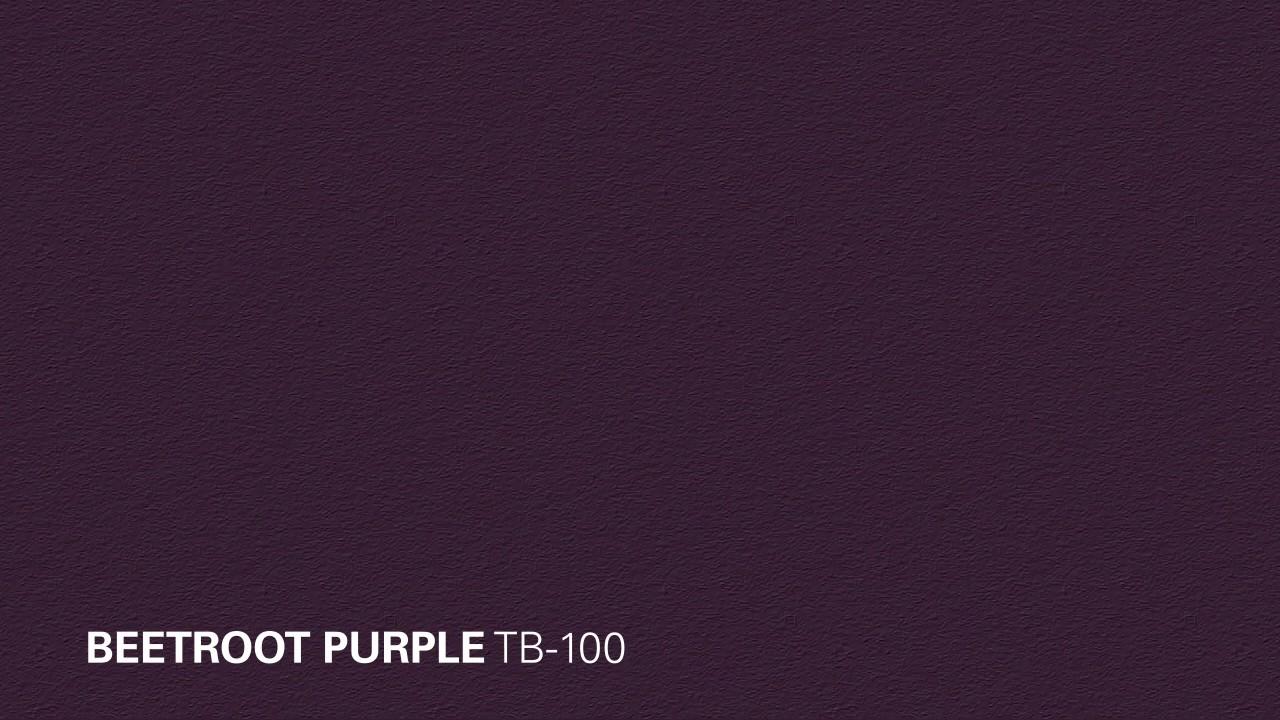 KILZ® Tribute: Beetroot Purple TB-100